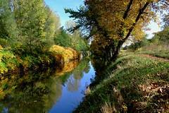 Chenal en automne (jpto_55) Tags: automne lot chenal reflet xe1 fuji fujifilm fujixf1855mmf284r france paysage