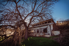 Light Reaper (Pedalhead'71) Tags: dusty washington abandoned house tree palouse