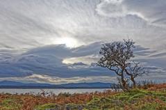 5DS_1731_DxO (john_trefonen) Tags: linmore beach clouds landscape seascape