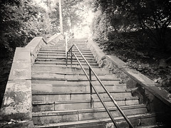 Ewen Park Steps,  Spuyten Duyvil, 2014 (Lee Yee Photography) Tags: victorian colonial quaint knightsbridge ewenpark hudsonriver ivy charlottebronte bronx stonesteps staircase antiquehomes gaslight antique charming vintage
