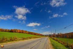 Down a Country Road at Caneadea (DTD_0699) (masinka) Tags: caneadea newyork unitedstates white clouds blue fall autumn usa western ny paved narrow country countryside rural land landscape open poles trees colors bright suny etbtsy ontheroad converginglines vanishingpoint distance