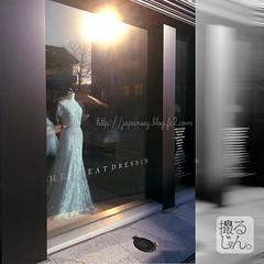 (finalistJPN) Tags: goodmorning sunshine lights weddingdresses bridaldresses pictaro presentingpicturesandphotos ppap discoverjapan japanguide discoverychannel nationalgeographic visitjapan traveljapan stockphotos happiness goodluck