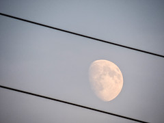 Moon bound (Uros_N) Tags: moon bound slovenija slovenia belakrajina whitecaniola semic p530 nikon coolpix
