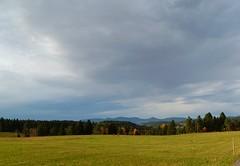 SCHWARZWALD IM HERBST (ehbub@yahoo.de) Tags: herbst schwarwald tannenbaum laubbaum wiese berge fernsicht