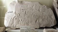 Stele of Khawy (konde) Tags: deirelmedina 19thdynasty newkingdom stele limestone khawy ancient petriemuseum hieroglyphs tomb214 thebes