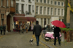 Beloved Brugge (Natali Antonovich) Tags: belovedbrugge brugge bruges belgium belgie belgique pensiveautumn autumn umbrellas rain street architecture lifestyle dog animal bikes oldtown oldtime oldworld oldest hat