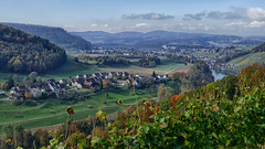 buchberg_06_22102016_14'35 (eduard43) Tags: landschaft landscape eglisau tössriederen buchberg 2016 fluss river rhein rhine oberiaichhaalde