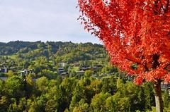 Saint-Gervais-les-Bains (Cervusvir) Tags: saintgervaislesbains hautesavoie auvergnerhonealpes frankreich france alpen montblanc alps montebianco
