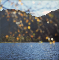 lake butter my ear (steve-jack) Tags: hasselblad 501cm 150mm fuji velvia 100f film medium format 120 6x6 buttermere cumbria autumn