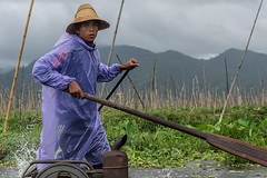 The Boatman (Matt S Dawson) Tags: myanmar burma asia inle lake boatman boat real madrid oar