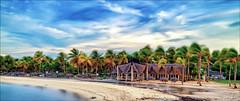 Cayo Coco Beach, Cuba (Robert Bilinski) Tags: cayococo caribbean cuba canon sigma2470f28 ocean beach palm trees sky clouds long longexposure slow shutter robbil robertbilinski