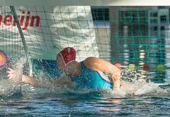 1C040099 (roel.ubels) Tags: len euro league waterpolo sport topsport utrecht uzsc 2016 krommerijn women