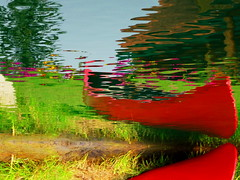 Water Art: Flipped canoe and flower garden lake reflections (peggyhr) Tags: pink blue red canada green reflections purple alberta grasses ripples flipped thegalaxy artforeveryone peggyhr bluebirdestates level1photographyforrecreation thebestshots oceansoftalent~ thelooklevel1red level2photographyforrecreationsilveraward super~sixstage1bronze infinitexposurel1 infinitexposurel2 dsc08311a