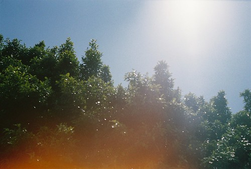 椎名林檎 画像16