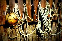 IMG_1377-001 (Caroline Oades) Tags: beach fence sussex coast pirates rope east wittering buoy ahoy landlubber buoyant
