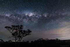 Voie lacte - Myponga (Christophe26130) Tags: southaustralia australie myponga