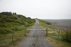 Iceland - Ln (Miki_Fog [masphoto.es]) Tags: island iceland islandia muoz ngel miguelangelsanchez miguelsanchez mikifog masphotoesmiguel islandia2015julio