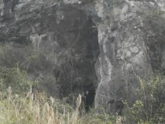 Guizhou China cave 普定崆山31号洞口 (黔中秘境) Tags: china asia caves cave 中国 caving guizhou speleo cccp 贵州 大自然 山洞 亚洲 洞 洞穴 cavem 中国洞穴 贵州洞穴