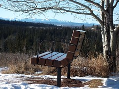 365-314 Fish Creek bench with the Rockies in the background (benlarhome) Tags: snow canada calgary ice alberta fishcreek fishcreekpark brokeback