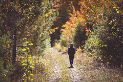 Into the woods (Playing_with_light) Tags: autumn trees red woman green nature leaves walking woods nikon path d800 into