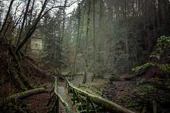 hidden place (Schub@) Tags: bridge november autumn art fall creek nebel sony herbst natur sigma bach e alpha brcke f28 dunst naturpark nex 19mm welzheim remsmurrkreis laufenmhle a6000 wieslauf schwbischerwald emount wieslaufschlucht
