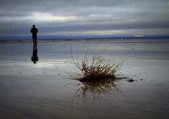 Periphery (eddieELM) Tags: ireland sea beach canon reflections coast sigma donegal rossnowlagh ulster selfie 30mm eos600d rebelt3i kissx5 eddieelm