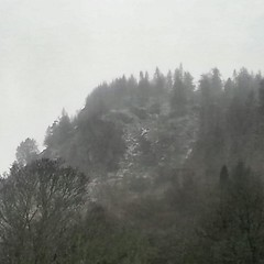 Birnam Hill (monkeyiron) Tags: snow woods perthshire birnam birnamhill