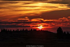 Sunset (Petar Bogdanov) Tags: bulgaria mountain red sunset sun sunsunset