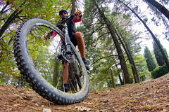 F29 (fil.nove) Tags: parcodellamaddalena 29 mtb vtt fisheye 8mm samyang8mm samyang ultrawideangle canon60d wheel park bosco trees bikers cannondale flash29 bycicle turin torino piemonte italia italy potrait ritratto selfi lefty cannondalelefty prospettiva perspective cannondalef29 canondaleflash29 mountainbike