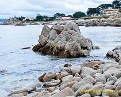 008 coast LR (bradleybennett) Tags: water river ocean stream creek beach shore shoreline line coast tide