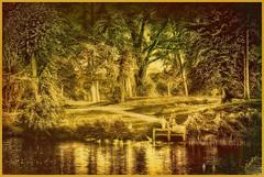 Lakeside (JAKE473) Tags: uk gloucestershire cheltenham parks