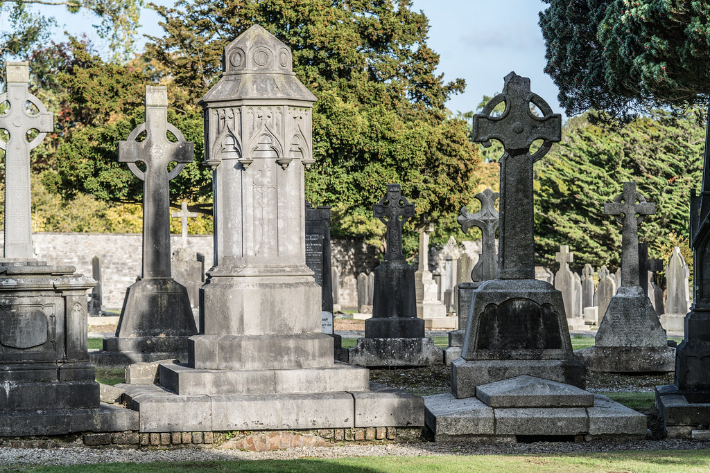 A QUICK VISIT TO GLASNEVIN CEMETERY[SONY F2.8 70-200 GM LENS]-122119