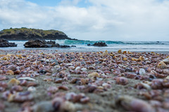 Spirits Bay Beach-3-2