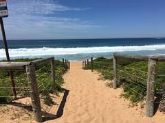 Sydney - Palm Beach (HerryLawford) Tags: sydney palmbeach