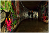 Graffiti Tunnel (Donna Rowley) Tags: graffiti tunnel underground underpass art artist paint painting ghosts longexposure colour color lettering words people subway paintings artwork scribble tag tagging spraypaint urban city decay