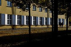 Walking (Fraila) Tags: frederiksberghave autumn denmark copenhagen frederiksberg nikon d600 nikkor50mm18f urban city people walking