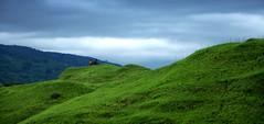 Green Hills (Sajeeb75) Tags: travel landscape hill blue sky cloud outdoor green grassland bangladesh