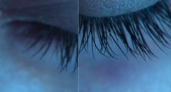 195/365 (ana.sousa129) Tags: macro macromondays nature body hand art orange blue corpo beauty skin skins photo color colorful red pele people pretty beautiful nice photography foto fotografia textura feelings senses abstract minimal minimalismo minimalist experimenting abstrato portrait retrato cute cut love
