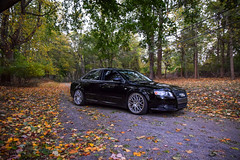 DSC_0037 (Haris717) Tags: ocean sunset fall leaves trees forest audi bmw rotiform