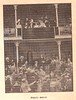 1901 Concurso Hípico en el Frontón Beti-Jai de Madrid (Igor G.M.) Tags: betijai beti jai madrid fronton pelota vasca