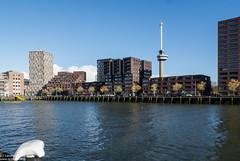 Euromast Rotterdam (Landleven (Irma Lit)) Tags: exif:aperture=11 exif:make=nikoncorporation exif:isospeed=100 exif:lens=1nikkorvr1030mmf3556 exif:focallength=10mm exif:model=nikon1v1 camera:model=nikon1v1 camera:make=nikoncorporation herfst autumn 2016 november rotterdam stjobshaven euromast water delta lloydkwartier