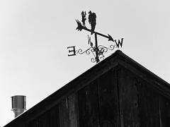 When East is West_7313081_DxO (henry_beckmeyer) Tags: farm country winery epl2