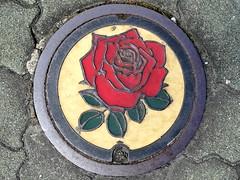 Godo Gifu, manhole cover 2  (MRSY) Tags: red flower color rose japan  manhole  gifu godo