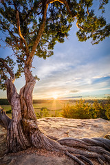 Another Day Ends in Castlewood Canyon (jlottm3) Tags: sunset tree art canon gold peace calm canyon age serene tranquil hdr timeless goldenhour skyclouds trave castlewood 14mm hdrlandscape
