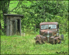 One Eyed Jack (Photos By Vic) Tags: rusty rust dodge truck pickup old abandoned junk