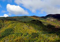 I boschi del Pratomagno (anto_gal) Tags: panorama toscana autunno bosco arezzo pratomagno valdarno 2015 lorociuffenna roccaricciarda