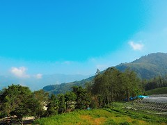 2015-10-26 09.11.40 (pang yu liu) Tags: travel 10 oct homestay 阿里山 旅遊 alishan 2015 民宿 十月 mimiyo 祕密遊
