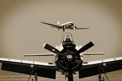T 28 Trojan (5) (Indavar) Tags: plane airplane airshow chipmunk mustang albatros rand beech at6 radial an2 p51 l39 antonov dc4 dhc1 beech18 t28trojan b378