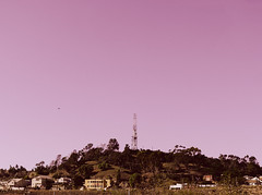 Radio Hill Gardens (elevatoro) Tags: california tower radio losangeles downtown chinatown hill helicopter expired dtla brainbow leibow elevatoro