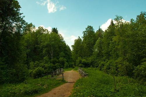 Road near Serednikovo ©  Andrey